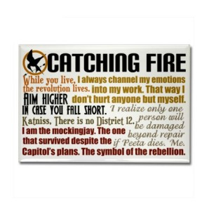catching_fire_quotes_rectangle_magnet
